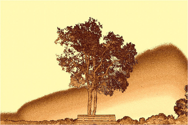 Japanese Style Tree<br /> Second - Judges Choice<br /> Altered Reality