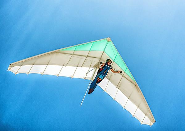 Flying High - Ray Ross<br /> Judge's merit