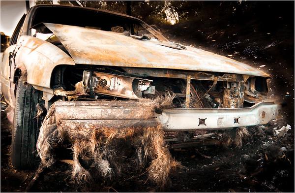 Creepy Wreck - Richard Goodwin<br /> First place judge's choice