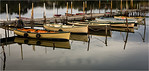 All in a Row - Richard Goodwin<br /> Second place members' choice.