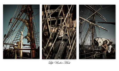 Life Under Mast - Richard Goodwin Set - Second place Judge's choice and sixth place Members' choice