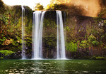 Whangarei Falls - Kim McAvoy<br /> Open - First place judge's choice