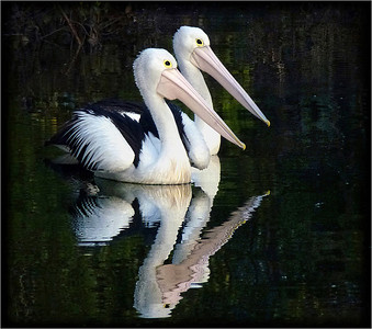 Twin Reflections - Phil Burrows Open - Fourth place Members' choice