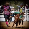 Trainee Buckaroo - Ray Ross<br /> Open - Second place members' choice