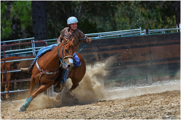 Horsemanship - Ray Ross<br /> Set Projections - Third place judge's choice and second place members' choice