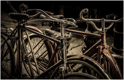 Old Bicycles - Richard Goodwin Open - Third place judge's choice and second place members' choice