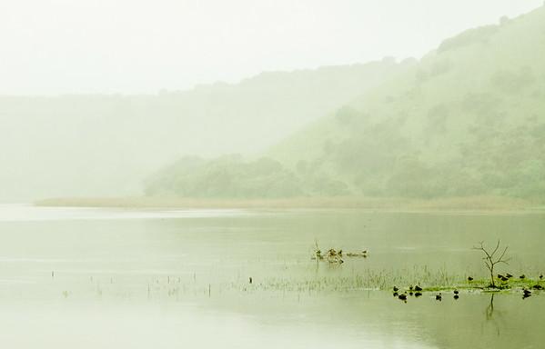 Wet Day, Tower Hill - Richard Goodwin