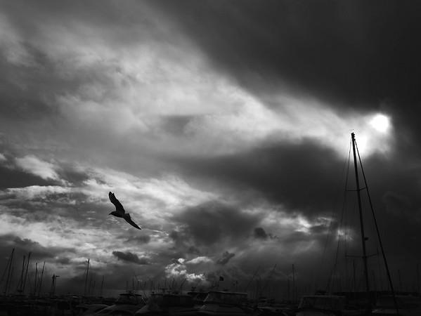 Storm Hillarys - David White