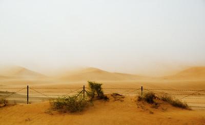 Sandstorm - Kim McAvoy