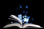 The Magic of Books - Kim McAvoy