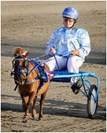 Me and My Pony - Hans Wellinger