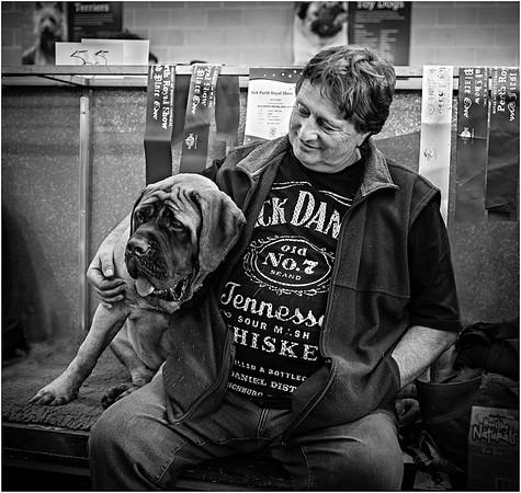 Good Dog - Lee Bickford