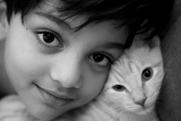 Pets and People - Niroshan Muwanwella