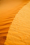 Dune - Kim McAvoy