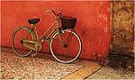 Bolgna Bicycle - Lee Bickford