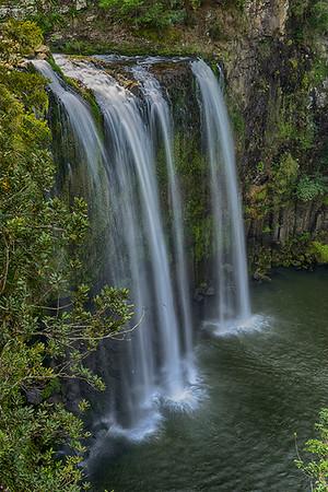 Whangarei Falls - Elaine Reynolds