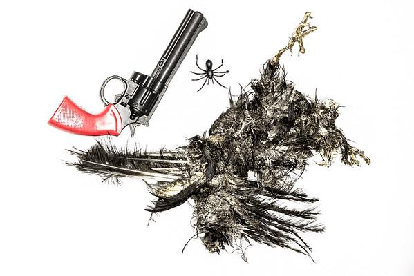 Feathered Fatality - Richard Goodwin