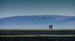 Evening Stroll - Anne Jones