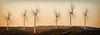 Wind Farm - Ray Ross
