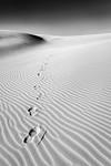 Footprints - Stan Bendkowski