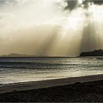 Dawn at Mission Bay - Jocelyn Manning