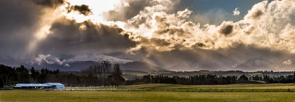 Misty Morning on the Farm - Elaine Reynolds