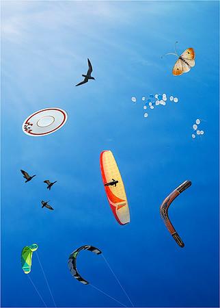 Identified Flying Objects - Jocelyn Manning