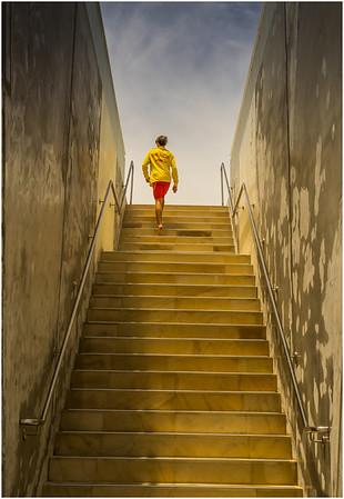 Smart Steps - Richard Goodwin
