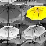 Umbrellas - Bruce Finkelstein