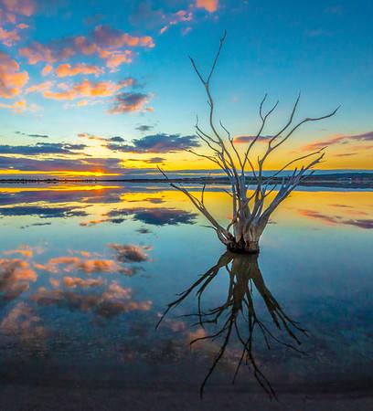 Lake Ninan - Lemuel Tan