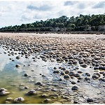 Thrombolites Rocks - Grace Munday