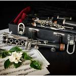 Clarinet with Gardenia - Richard Kujda