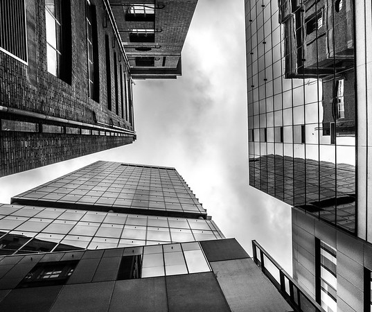 Old and New Skyward - Richard Goodwin