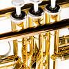 Trumpet Valves - Kim McAvoy