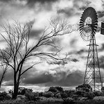 Glendambo Windmill - Richard Goodwin