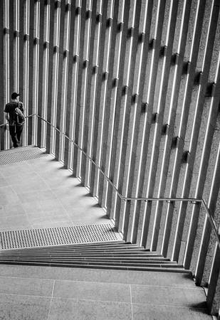 Learning Steps - Richard Goodwin