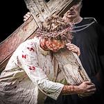 Carrying His Cross - Richard Goodwin