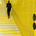 Yellow Beckons - Richard Goodwin