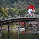 Red Umbrella - Peter Sharman