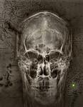 Dead Man's Treasure - Ray Ross