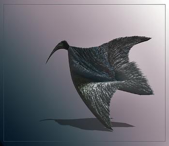 A Bird with No Eyes - Dita Hagedorn