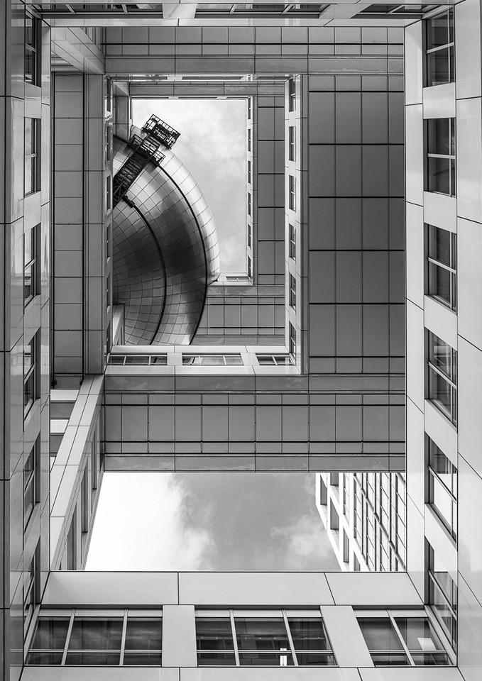 Looking Up - Michele Augustyn