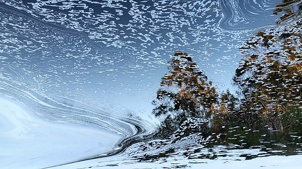 Winter Dreamscape - Steve Brown