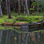 Row Boat - Michele Augustyn
