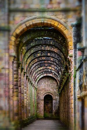 The Old Abbey - Elaine Reynolds