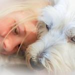Puppy Love - Trish Gibbs