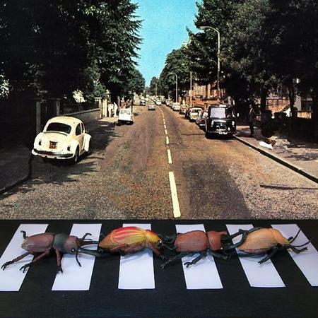 The Beetles Abbey Road - Steve Brown