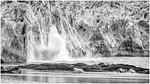Diminishing Glacier - Richard Kujda