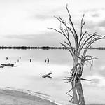 Sunrise at Lake Ninan - Susan Moss