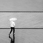 Rainy Day Reflection - Ann Jones